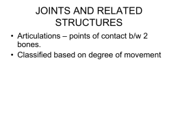 JOINTS AND RELATED STRUCTURES