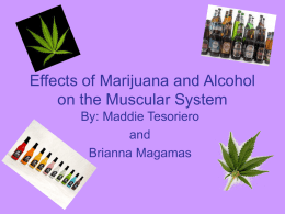 Effects of Marijuana and Alcohol on the Muscular