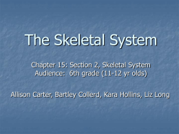 The Skeletal System: Power Point Presentation
