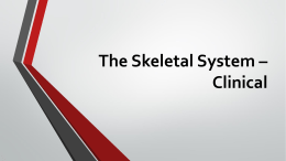 The Skeletal System * Clinical