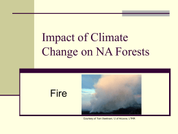 Impact of Climate Change on W Forests