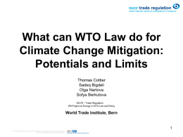 What can WTO Law do for Climate Change Mitigation