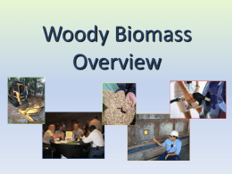Welcome to the Wood to Energy Forum