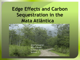 ALLIE SCHWARTZ Carbon Sequestration and