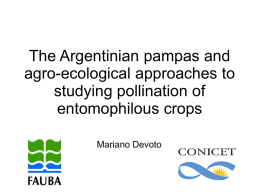 The Argentinian pampas and agro