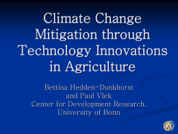 Ms. Bettina Hedden-Dunkhorst, Center for Development Research