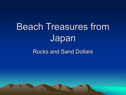 Beach Treasures from Japan