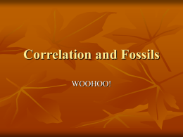 Correlation and Fossils Powerpoint