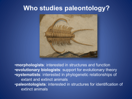 Biodiversity and Paleontology One: PowerPoint Presentation