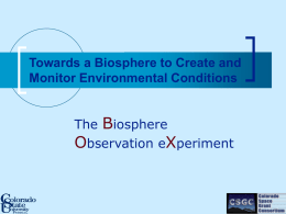 Organization Inside the Biosphere