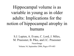 Hippocampal volume is as variable in young as in older adults