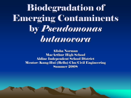 Biodegradation of Pharmaceuticals and Personal Care Products by