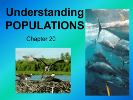 Notes Chapter 19 Populations