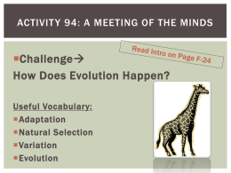 Activity 94: A Meeting of the Minds