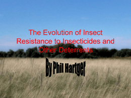 The Evolution of Insect Resistance to Insecticides and