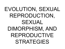 EVOLUTION, SEXUAL REPRODUCTION, SEXUAL DIMORPHISM,