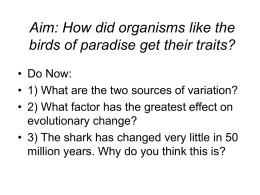 Aim: How did organisms like the birds of paradise get their traits?