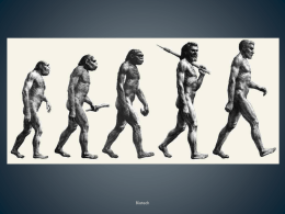 Human Evolution - Environmental