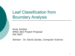 Analysing Edges to Classify Leaves