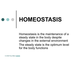HOMEOSTASIS - The Open Door Web Site : Home Page