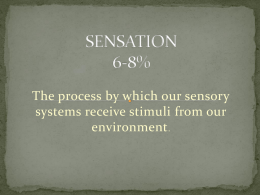 SENSATION - Ms. Kelly's AP Psychology Website