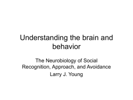 Neurobiology of Social Recognition