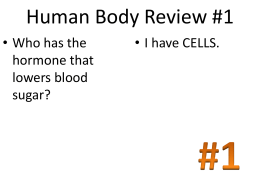 Human Body Review #1