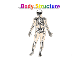 Body Structure - New Caney High School