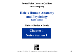 PowerPoint to accompany Hole`s Human Anatomy and Physiology