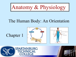 Organ Systems - Cobb Learning