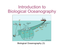 Chapter 10 Biological Productivity in the Ocean
