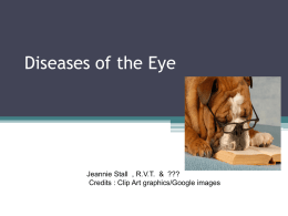 Diseases of the Eye CC