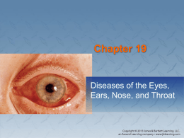 Chapter 19: Diseases of the Eyes, Ears, Nose, and Throat