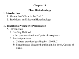 VI. Genetic Engineering or Recombinant DNA Technology