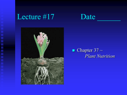 Lecture #17 Date