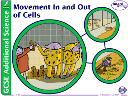 2. Movement In and Out of Cells
