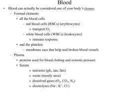 All_the_circulatory_slides