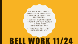 Bell Work 11/24 - scm.rcs.k12.tn.us
