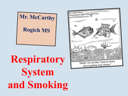 Respiratory System and Smoking