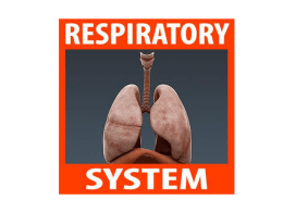Breathing versus Respiration