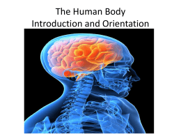 The Human Body Intro