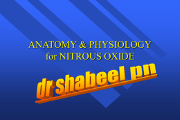anatomy and physiology of nitrous oxide