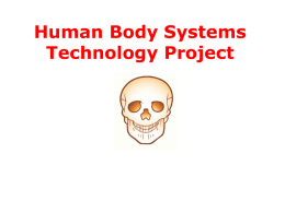 Human Body Systems DR. I MCSNEER