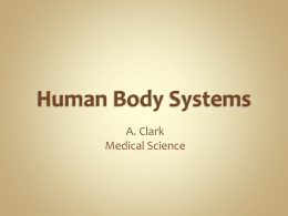 Human Body Systems - New Caney ISD / Homepage