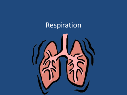 Respiration - Great Neck School District