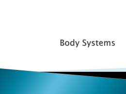 Body Systems - Dickinson ISD