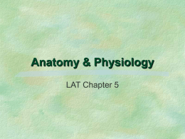 Anatomy And Physiology - AZ Branch AALAS Homepage