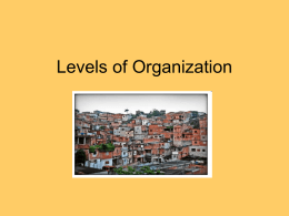 Levels of Organization ppt
