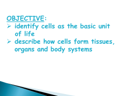 Cells - Body Systems