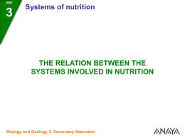 3 Relation between the systems involved in nutrition